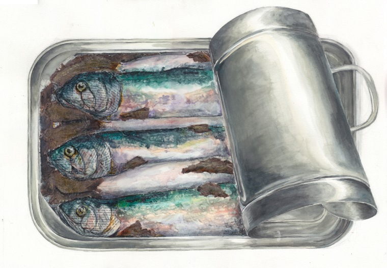 Sardine Portrait, Watercolor on paper collage