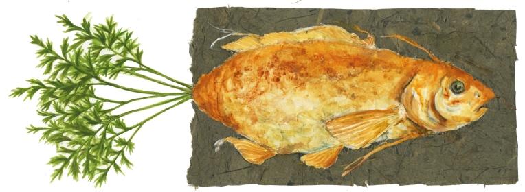 carrot fish horizontal