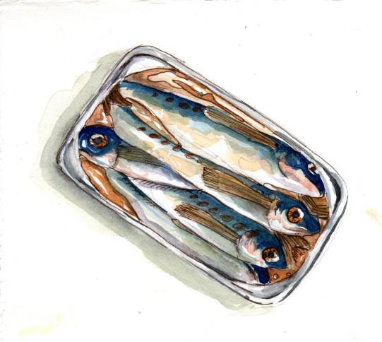 little-sardines