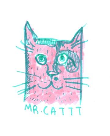 mr catt