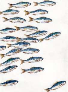 Little sardines I, Stamp and Watercolour, 2015